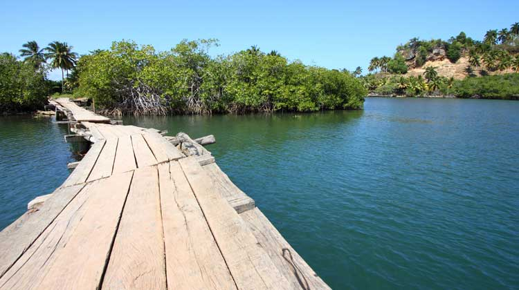 Cruising-to-Cuba-Baracoa-Alejandro-de-Humboldt-National-Park-