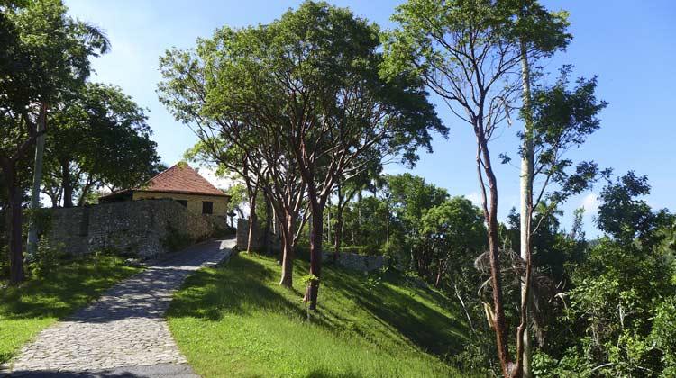 Coffee Plantation Las Terrazas