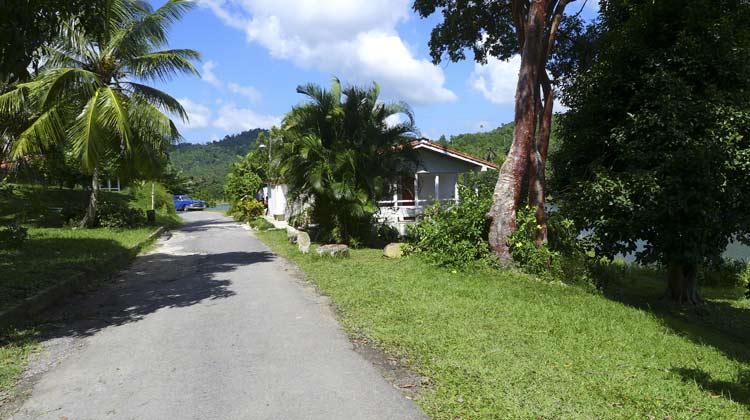 Las Terrazas Road with Chevy Cuba